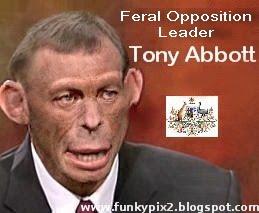 TonyAbbottFeralLeader
